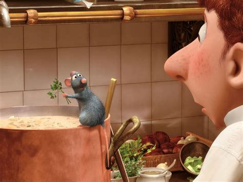 cuisine ratatouille la ratatouille de r 233 my grazia