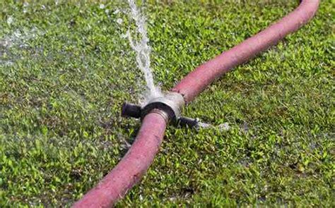 Garden Hose Keeps Leaking Great Hose Washer Homesteading And Livestock