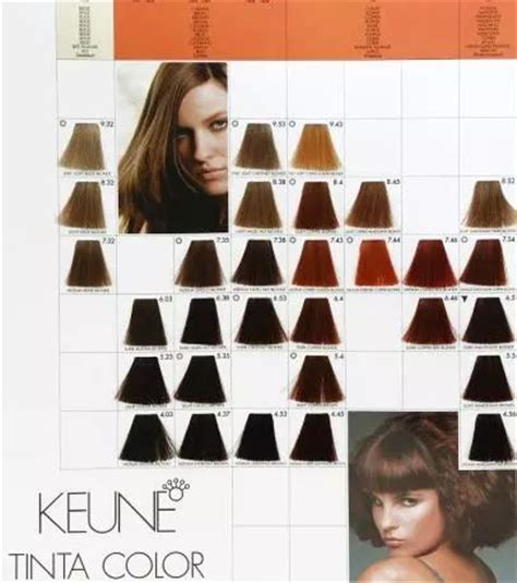keune color chart 1000 images about hair colour on