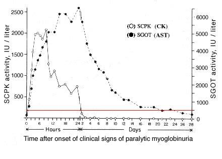is creatine kinase test ck and ast eclinpath