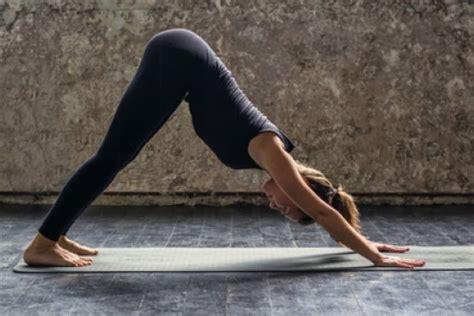 tutorial de yoga video tutorial rutina de yoga para mejorar la digesti 243 n
