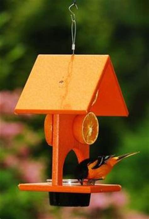oriole information on pinterest baltimore orioles bird