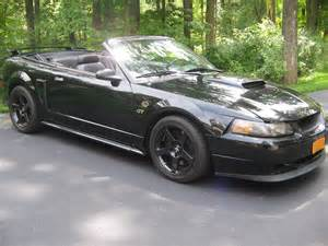 Ford Mustang 2001 2001 Ford Mustang Pictures Cargurus