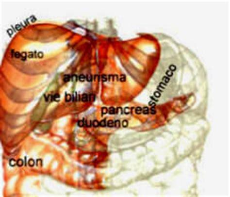 corpo umano organi interni lato sinistro le sedi dolore addominale