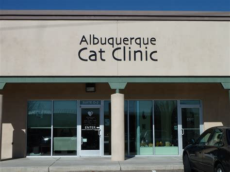 cat and clinic albuquerque cat clinic floppycats visit to an all cat clinic in albuquerque