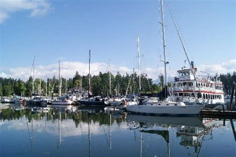 boat cruise up indian arm harbour cruises vancouver to explore