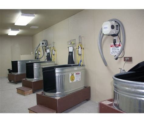 wash tubs for dogs pet grooming tubs foter