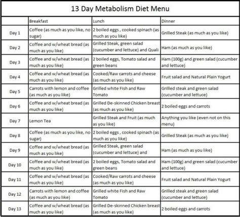 13 Day Detox Diet Menu by 13 Day Metabolism Diet The Max Planck Diet Fly Pinions