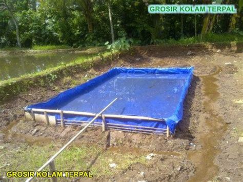 Bibit Ikan Gurame Di Banda Aceh budidaya ikan gurame di kolam terpal agro terpal