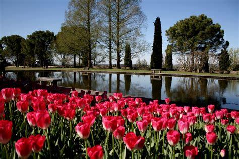 parco giardino sigurt 224 inizia quot tulipanomania 2015