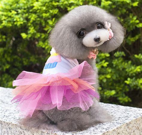 puppy clothes cheap wholesale cheap pet dress for puppy clothes for small clothing for pet