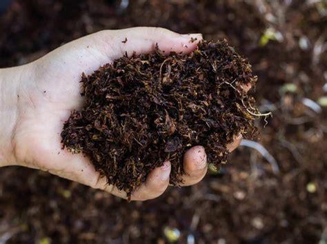 is fertilizer what is organic fertilizer