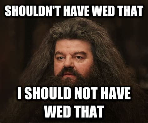 Hagrid Meme - every man contemplating divorce meme guy