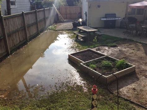 how to stop my backyard from flooding how do i prevent my garden from flooding