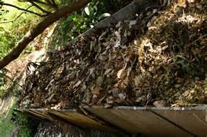 organic composting amp pest control sos rural india