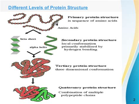 protein structure methods for protein structure prediction