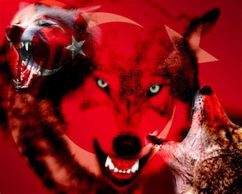 turk bayragi ve bozkurt www turkvideoportal tr gg bozkurt sembol 220 ve bozkurtlar