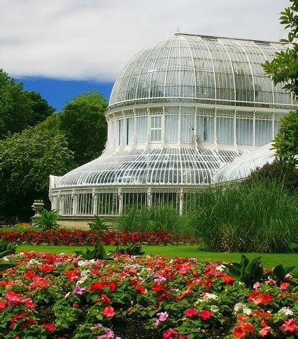 Ulster Museum Botanic Gardens Newforge House Botanic Gardens Belfast Events