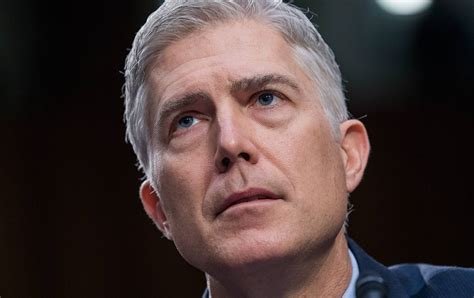 neil gorsuch information neil gorsuch is not another scalia he s the next john