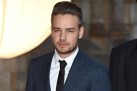 Liam Payne fans raise money for liam payne s birthday celebmix