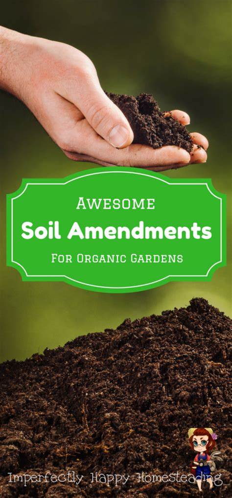 awesome soil amendments for your organic vegetable garden