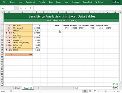 financial decisions with excel sensitivity