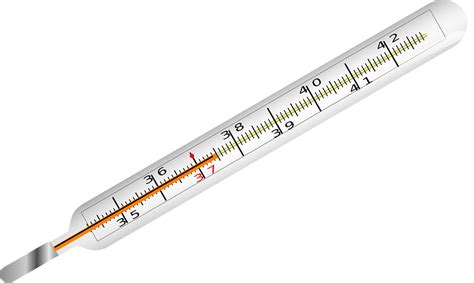 Www Termometer free vector graphic thermometer temperature fever free image on pixabay 309120
