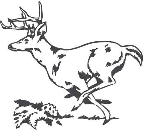 running deer coloring page deer running pages coloring pages