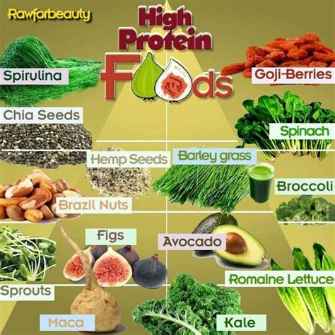 m protein high high protein foods remedies