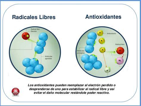 imagenes de radicales libres y antioxidantes azul antioxidante super frutas
