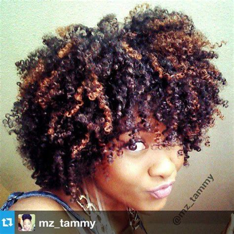 pictures of highlights in dark afro best 25 natural hair highlights ideas on pinterest