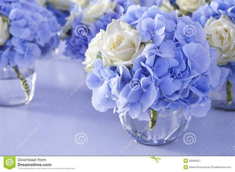 Flowers Free Sul bouquet of white and blue flower in vase stock image