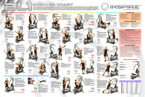 bioforce home exercise chart search engine at