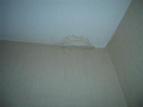 wasserschaden an der decke was tun helmstedt photo featured images of helmstedt lower