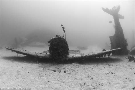 Standard Pacific Home Floor Plans by World War Two Aircraft Lost For 70 Years Found Pacific
