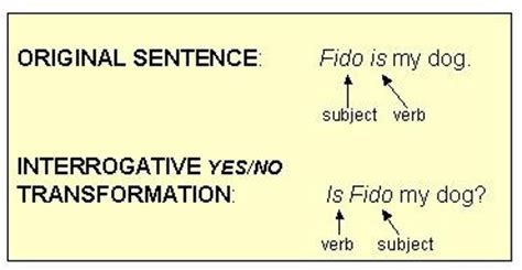 pattern of interrogative sentences niv 영어성경공부 sentence pattern transformations 문장 형식 전환