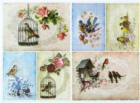 Decoupage L - a 4 classic decoupage paper scrapbook sheet vintage birds