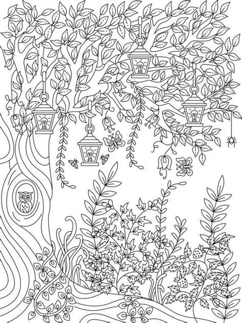 secret garden coloring book dk de 25 bedste id 233 er inden for tegninger p 229
