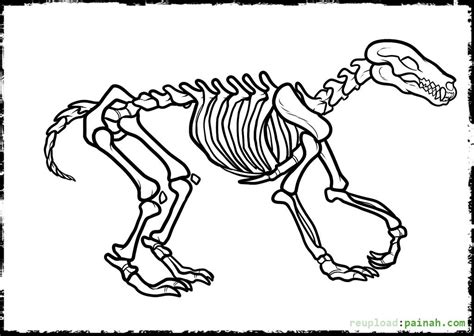 dinosaur skeleton coloring page free coloring pages on