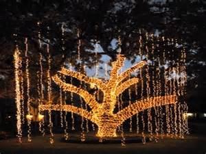 Outdoor christmas lights idea unique outdoor christmas lights ideas