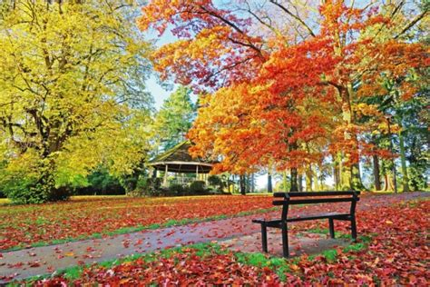 pictures  prove autumn    time  visit