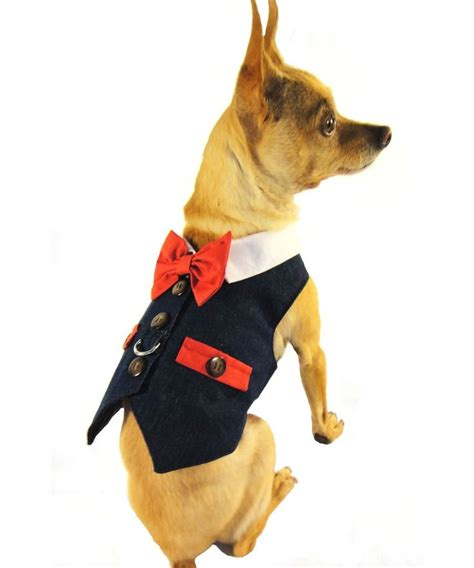 Pet Vest To Save Your Poochs Day by 6766 Best Food Treats Images On
