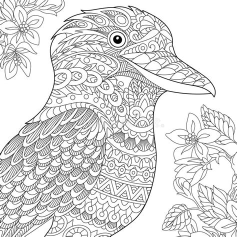 anti stress colouring book australia zentangle stylized kookaburra bird stock vector image
