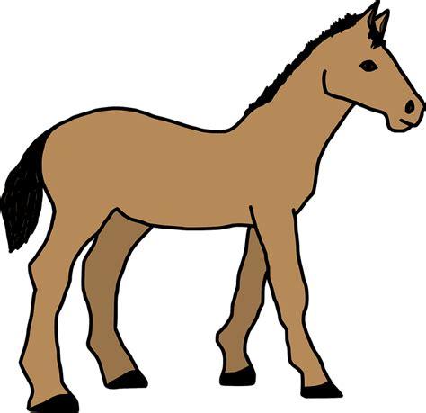 Istanatoys Id Baby Steps Ikan hewan kartun kuda 183 gambar vektor gratis di pixabay