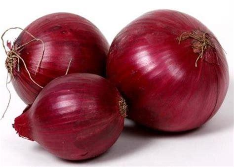 Benih Bawang Merah Umbi manfaat bawang merah untuk kesehatan dan kesuburan rambut
