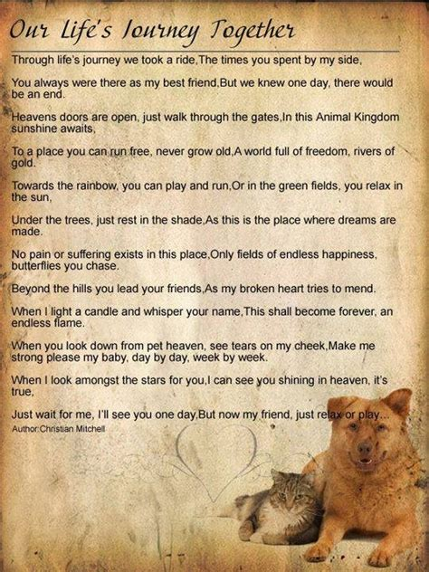 pets in heaven gift for owners our s journey together pawprints on my our and