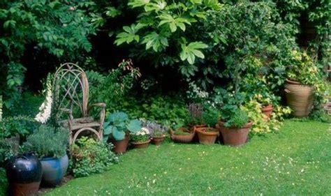 Babylon Tulip Garden Rok A Line Uk 1 theme to keukenhof gardens as america line