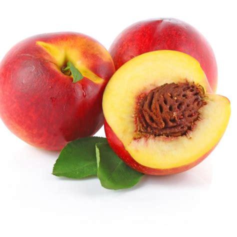 Mini Home by Zimpelmann Select Fruit Gmbh Amp Co Kg International