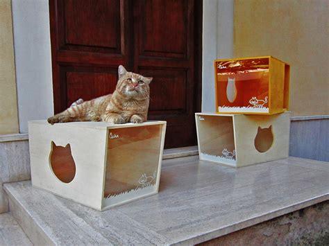 design works home is where the cat is qcha la cuccia per gatti di design ecopensare ecopensare