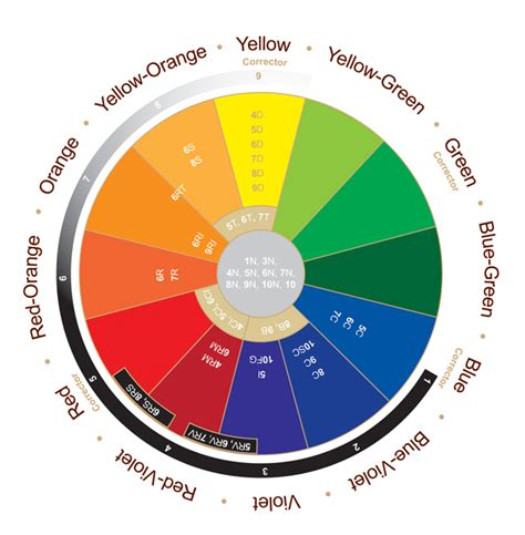 hair dye color wheel the hair color wheel hair and other musings of hair dye